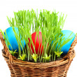 Basket with Easter eggs. — Foto Stock