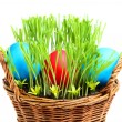 Basket with Easter eggs. — Stok fotoğraf