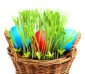 Basket with Easter eggs. — Stock Photo