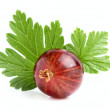 Red gooseberry with a leaf. — Stock Photo #49063639