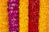 Fondo de rayas flores — Foto de Stock