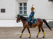 Kremlin regiment on horseback — Stock Photo