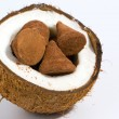 Coconut and chocolate candy — Stock Photo