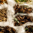 Fried insects in plastic bags — Stock Photo #30650713