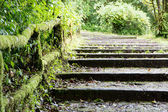 Old steps — Stockfoto