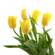 Stock Photo: Spring bouquet of yellow tulips isolated on white background.