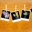 Old photos with flowers hang on clothespin on wood background — Stock Photo