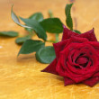 Stock Photo: Red rose on wood background