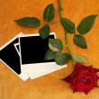 Red rose and old photod on wood table background — Stock Photo
