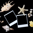 Old photo with sea shells isolated on black — Stock Photo