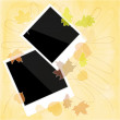 Stock Photo: Blank photo frame with autumn leaves