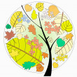Beautiful vector autumn tree on white background — Stock Photo