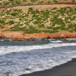 Olive trees, the sea, the waves on the coast of Crete. Greece — Stock Photo