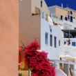 Stock Photo: View of Santorini island Greece