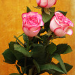 Pink roses on a wooden background — Stock Photo