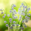 Vase with lily of the valley — Stock Photo