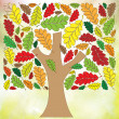 Beautiful autumn tree on white background  — Stock Photo