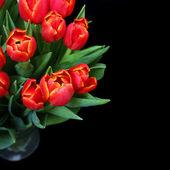 Boeket van rode tulpen op zwarte achtergrond — Stockfoto