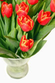 Bouquet of red tulips in a vase isolated on white  — Stock Photo