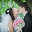 Royalty-Free Stock Photo: Kiss of the groom and bride