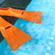 Orange Rubber flippers in pool — Stock Photo