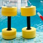 Dumbbells for Aqua Aerobics — Stock Photo #44578901