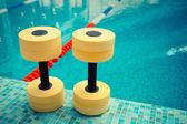 Dumbbells for Aqua Aerobics — Stock Photo