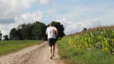Man running along the corn field in summer — Stockvideo