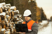 Forester with the computer near the log pile — Stock Photo