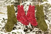 Dva páry vlněných ponožek, zavěšená na laně v lese — Stock fotografie