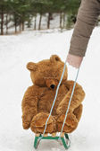 Man pulled sledges with Toy Bear — Stock Photo