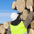 Stock Photo: Forester near logs off the pile
