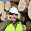 Stock Photo: Lumberjack talking on cell phone near at log pile