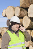 Forester talking on the cell phone near at the log pile — Stock Photo