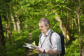 Hiker explores the map in the woods on trails — Foto de Stock