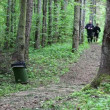 Wideo stockowe: Father and son running along forest trail episode four