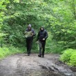 Stock Video: Hikers with map and binoculars on forest trails episode 4