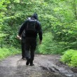 Stock Video: Hikers with map and binoculars on forest trails episode 2