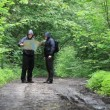 Stock Video: Hikers with map and binoculars on forest trails episode 1