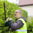 Stock Photo: Landscape worker with electric bush cutter