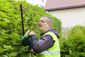 Landscape worker with an electric bush cutter — Stock Photo