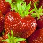 Fresh and Juicy Strawberrys — Stock Photo