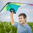 Boy with kite on a corn field — Stock Photo