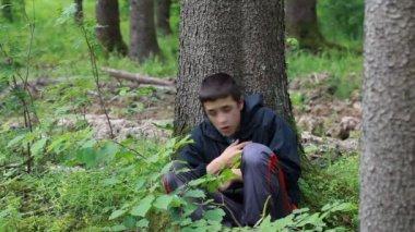 Pojke förlorade i den skogen avsnittet 5 — Stockvideo