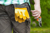 Man with gardening shears in hand — Stock Photo