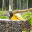 Ax carved in stump in forest — Stock Photo