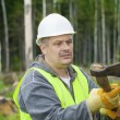 Lumberjack working in the forest with an ax — Stock Photo #29691113