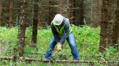 Leñador en el bosque con un episodio de hacha 4 — Vídeo de Stock