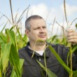 Farmer in the corn field — Stock Photo