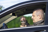 Man with coffee in the car on the road — Stock Photo